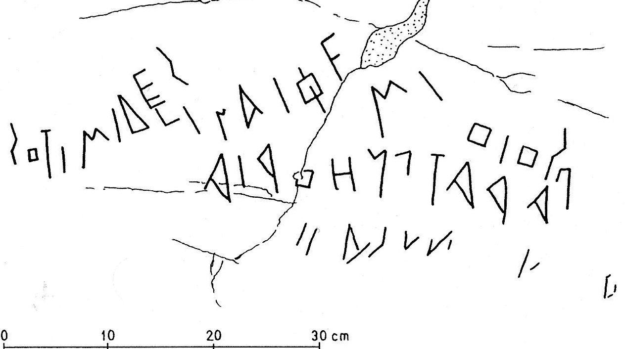 Bultrighini Fig.10